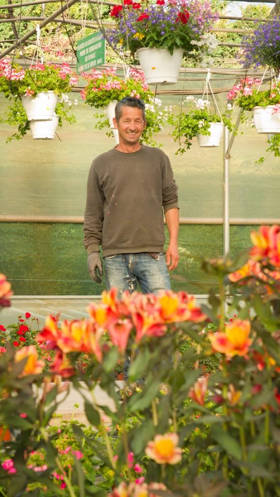 La Roseraie du vaucluse - conseils - jardinier